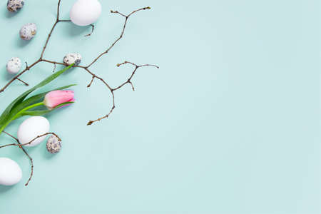 Background with chicken and quail easter eggs and branches on the blue background, copy space