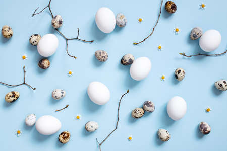 Pattern of chicken and quail easter eggs and branches on the blue background, top view