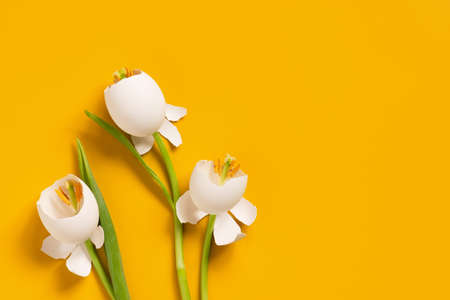 Spring Easter flowers made of eggshell, creative composition