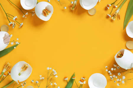 Bright yellow background with spring Easter flowers made of eggshell, creative composition
