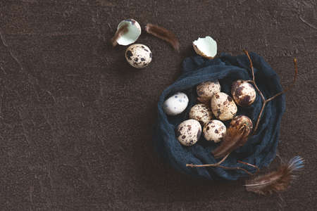 Nest of fabric with small quail eggs decorated with feathers and branch, copy space Imagens
