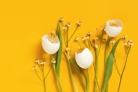 Spring Easter flowers made of eggshell on yellow, creative composition