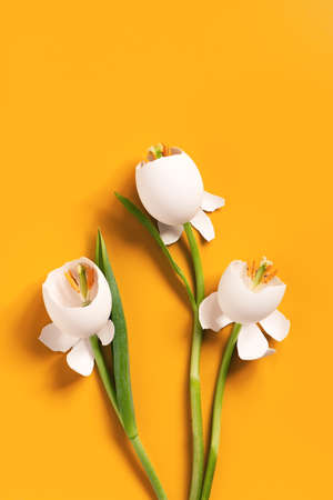 Spring Easter flowers made of eggshell on bright yellow, creative composition