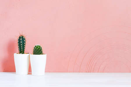 Background with two small cactuses on the wooden table against the pink-coral textured wall, copy space Imagens