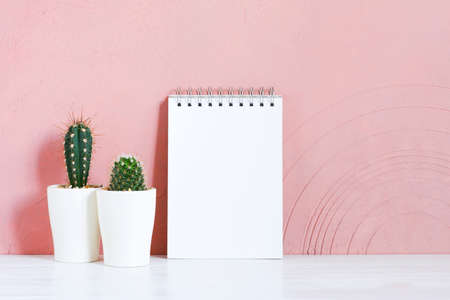 Blank white notepad and cactuses on the wooden table against the pink-coral textured wall, copy space