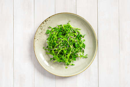 Green seedling salad in the plate on the white wooden table, top view Imagens - 120563813