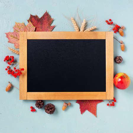 Black chalkboard on the blue table decorated with autumn leaves and berries, copy space 写真素材