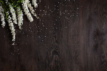 Dark brown wooden background decorated with white flowers, copy space