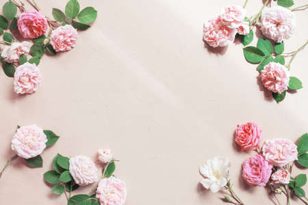 Tender background of pink roses on textured beige background, copy space