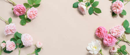 Tender banner of pink roses on textured beige background, copy space