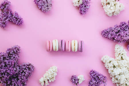 olored macaroons and lilacs. Standard-Bild