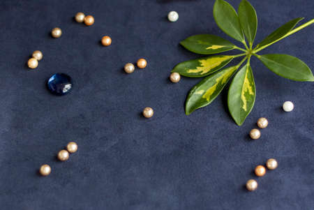 Background for the design. Beads. Green leaf. Various decor elements. Bright flowers. Easy base. Dark background. 스톡 콘텐츠