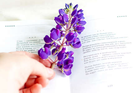 Sweet bagels and tender lupine flowers. Light composition with bright and purple flowers. A gentle and romantic morning with tea and a book. A book of poems for Breakfast.