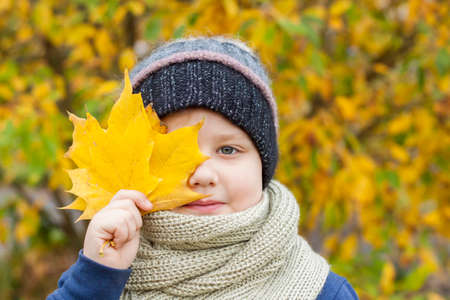 Autumn mood. The boy is holding yellow maple leaves that cover part of his face so that only one eye is visible. Autumn portrait of a child in a knitted hat. Sight.