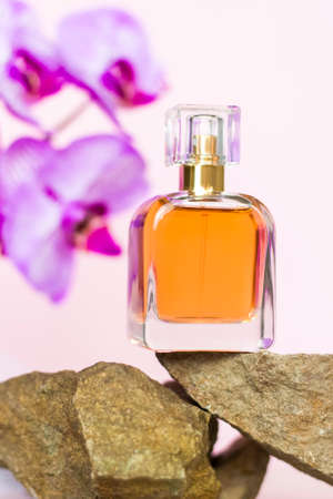 A perfume bottle stands on a stone against a background of beautiful orchids. Stylish appearance, layout, personality. Banner, a place for the text. The concept of cosmetics for care.