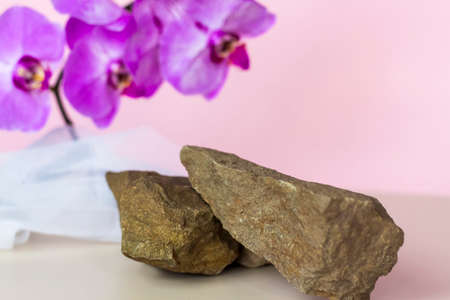 A gentle background for the presentation of cosmetic products. Stones and orchid flowers. Stylish appearance, layout, personality. Banner, a place for the text. The concept of cosmetics for care. Standard-Bild