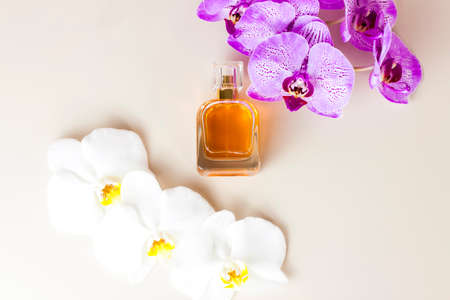 A perfume bottle on a pink background around beautiful orchid flowers. Stylish appearance, layout, personality. Banner, a place for the text. The concept of cosmetics for care. Standard-Bild