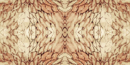 Snake Isolated. Craft Reptile Leather. White Animal Skin Camouflage. Snake Texture Seamless. Brown Paint Background Reptile. Sepia Safari Animal Prints. Snake Texture Seamless.