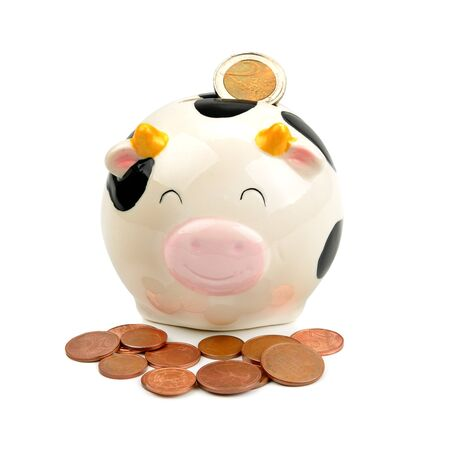 funny piggy bank and coins Stock Photo - 14556841
