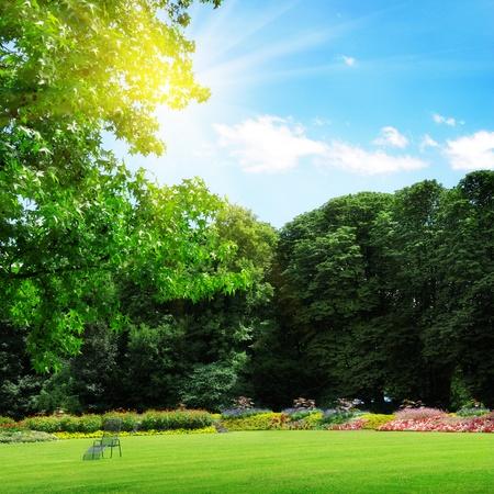 the yards: parque, cama de flores y c�sped para recreaci�n Foto de archivo