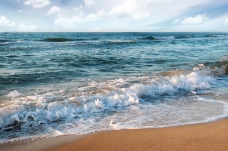 olas de mar: playa de arena y hermosas olas del oc�ano