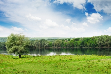 forest and meadow on the banks of the River Stock Photo - 14948683