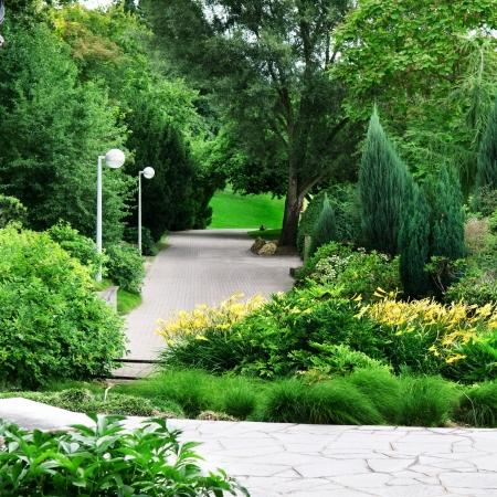 美しい公園を歩いて、レクリエーション