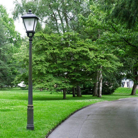 electric light in a beautiful park photo