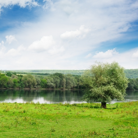 forest and meadow on the banks of the River                                     Stock Photo - 16169317
