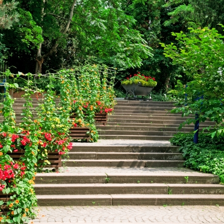 staircase in the cozy park photo