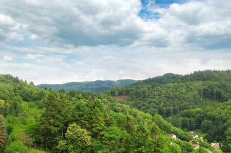 mountains covered with forests Stock Photo - 17842241