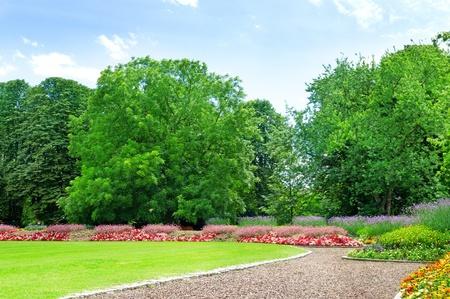 芝生と花の庭の夏の庭