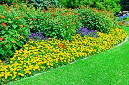 Mooie bloembed in de zomer park Stockfoto