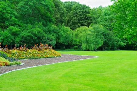 Summer garden with lawn and flower garden