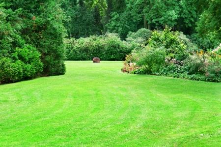 大規模な緑の芝生と美しいサマー ガーデン