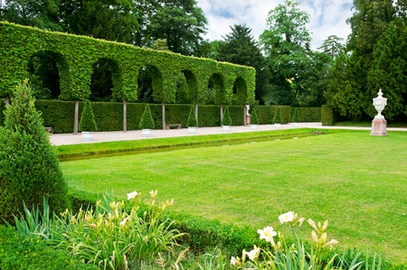 lawn and hedge in a summer park photo