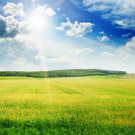 sunny day: Hermosa puesta de sol en el campo de primavera