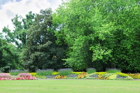Blossoming flowerbeds in the park photo