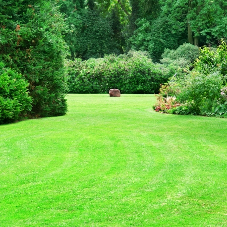 landscaping: beautiful summer garden with large green lawns Stock Photo
