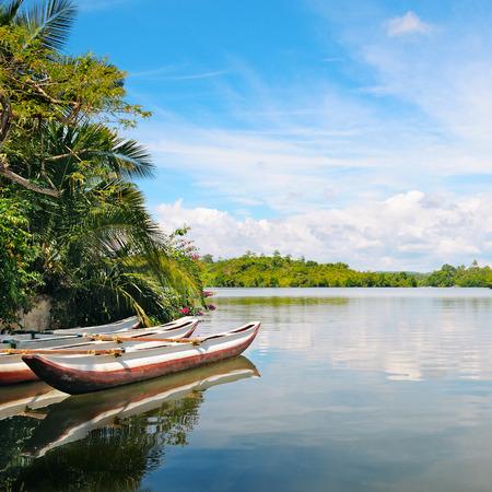River, rainforest and pleasure boats photo