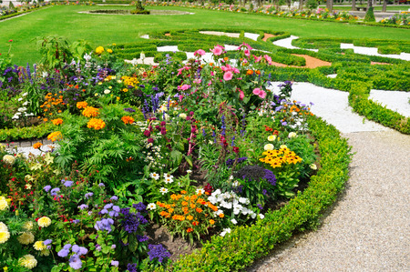 delightful flower bed in the summer park photo