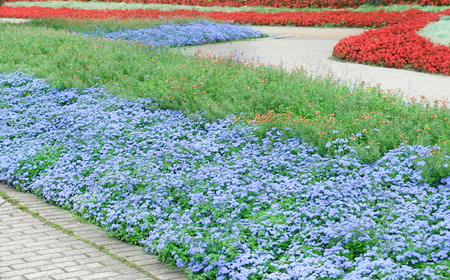 beautiful flower beds and walking paths photo