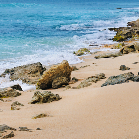 shores:                                     picturesque sandy shores of the Indian Ocean
