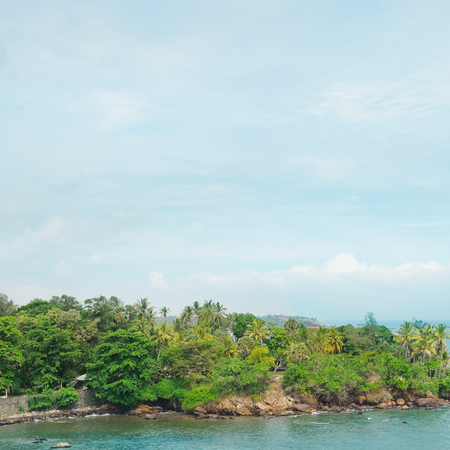 peninsula with tropical palm trees and waterscape photo