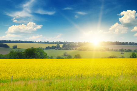 morning sunrise: field, sunrise and blue sky Stock Photo