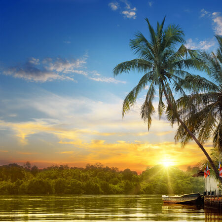 river, beautiful sunrise and tropical palms photo
