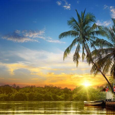 river, beautiful sunrise and tropical palms photo