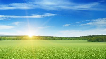 fall sunrise: field, sunrise and blue sky Stock Photo