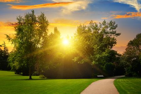 clouds  garden: beautiful summer park and sunset