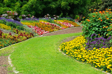 Tot bloei komende bloembedden in het park